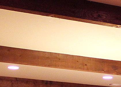 pic.ceiling.lg